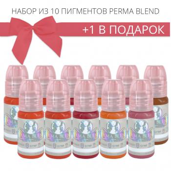 Набор пигментов для татужа Perma Blend 10 + 1 в подарок купить по лучшей цене в Украине